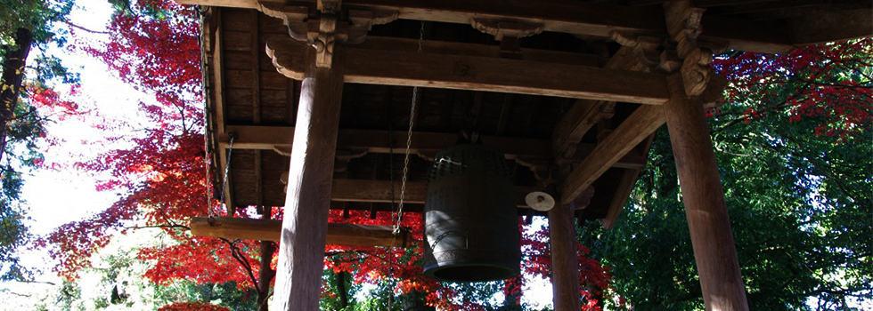 Il Tempio Saimyo-ji vista autunnale tradizioni